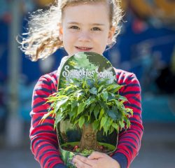 Experience planten